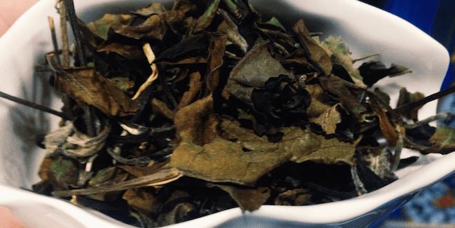 Білий чай старих дерев Пуеру